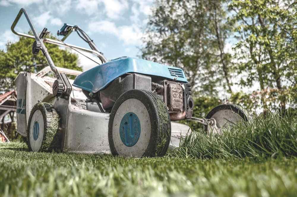 servicios profesionales jardineria comunidades de propietarios vecindia 3 - Jardinería para comunidades de propietarios